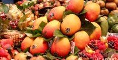Mango (foto)
