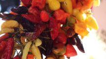 Peperoncini spagnoli (foto)
