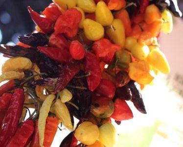 Peperoncini spagnoli