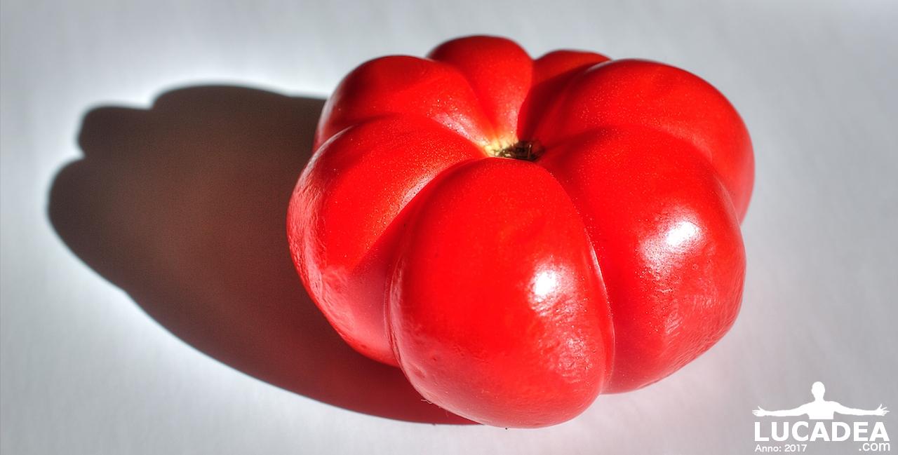 Pomodoro (foto hdr)