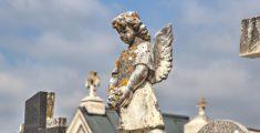 Che un angelo ti protegga (foto hdr)