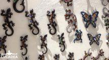 Lucertole come souvenir ad Ibiza (foto)