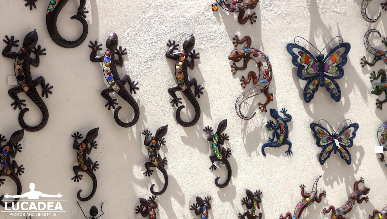 Lucertole come souvenir ad Ibiza