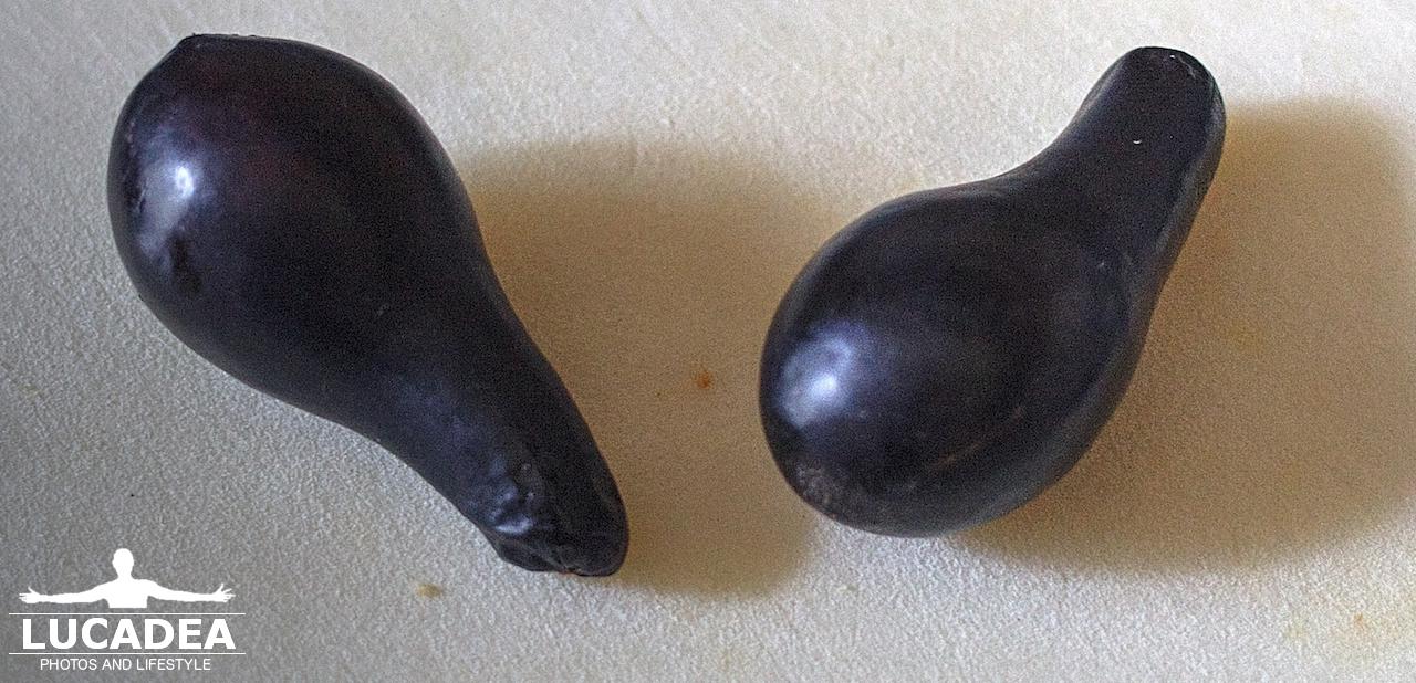 Le palte: una varietà di avocado che si trova in zona (foto hdr)