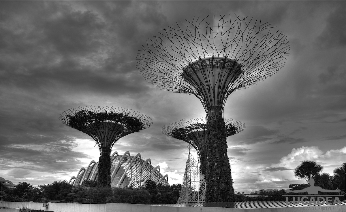 Supertree a Singapore