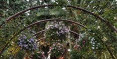 Flower Dome e Cloud Forest a Singapore