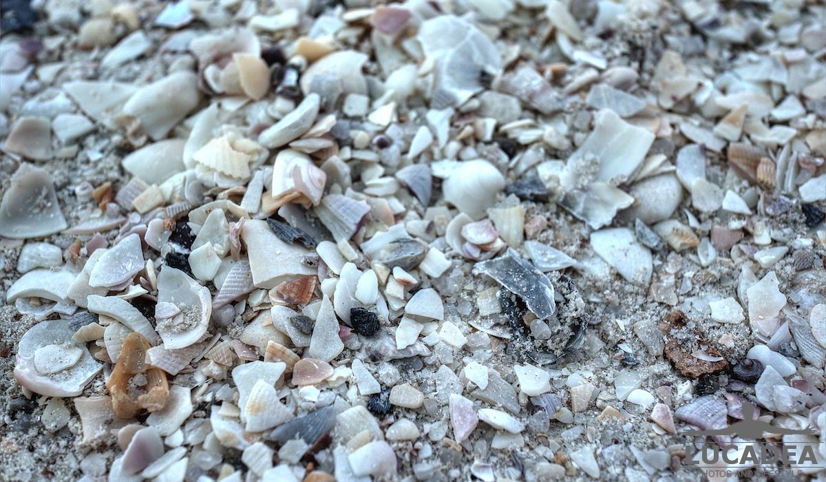 Sabbia di conchiglie a Langkawi