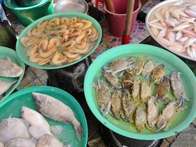 Crostacei thailandesi