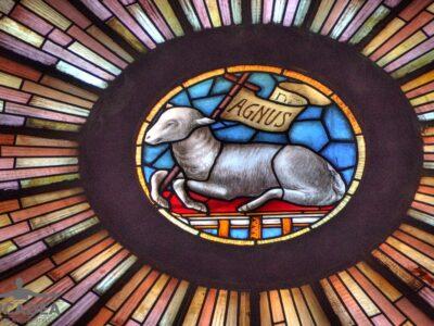 Rosone della Basilica dei Fieschi