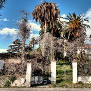 Villa delle Pesche