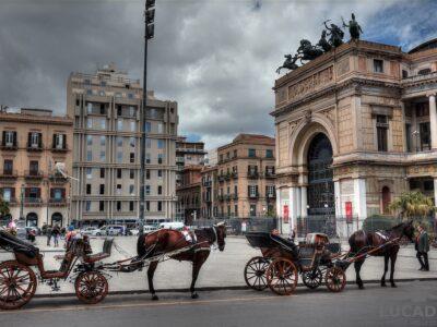 Cavalli a Palermo