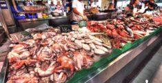 Banco del pesce a Palma