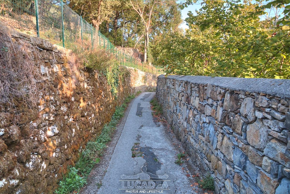 Muretti a secco in Liguria