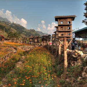 Cat cat village nell regione di Sa Pa