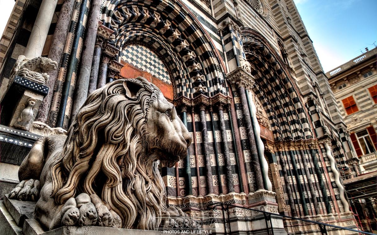 Leone in San Lorenzo a Genova