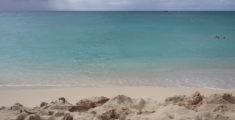 Mare da sogno: acqua a Maho Bay