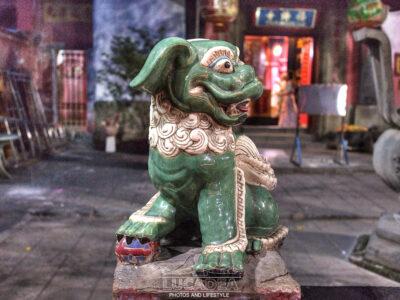 Drago cane ad Ho Chi Minh