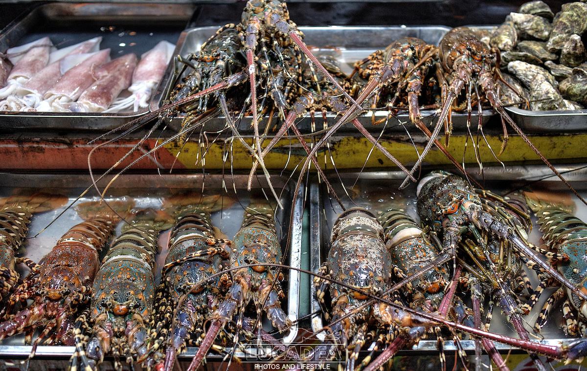 Aragoste in Vietnam