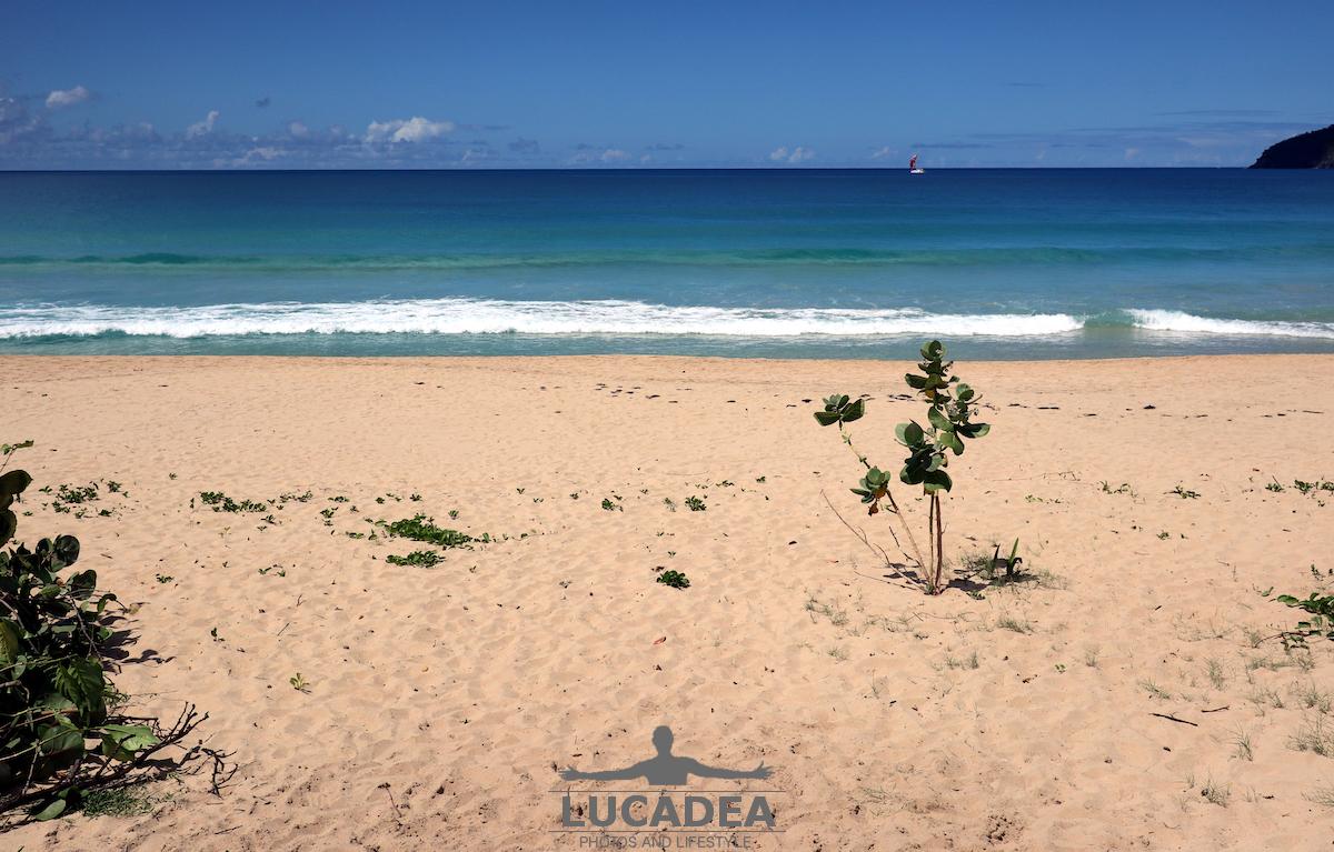 Spiagge da sogno: Lambert Bay a Tortola
