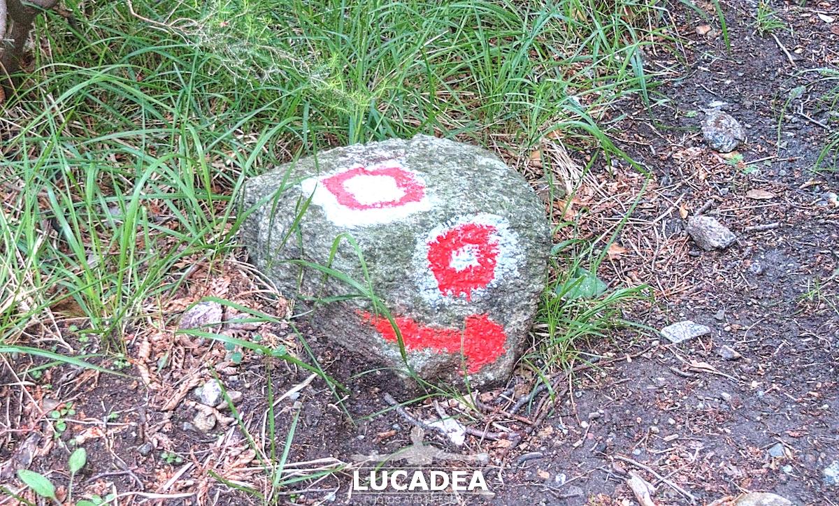 Sentiero Libiola-Case Gromolo