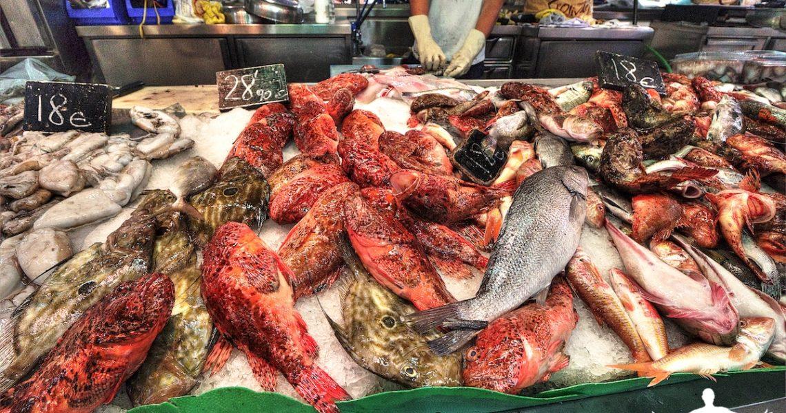 Pesci sul banco al mercato di Palma