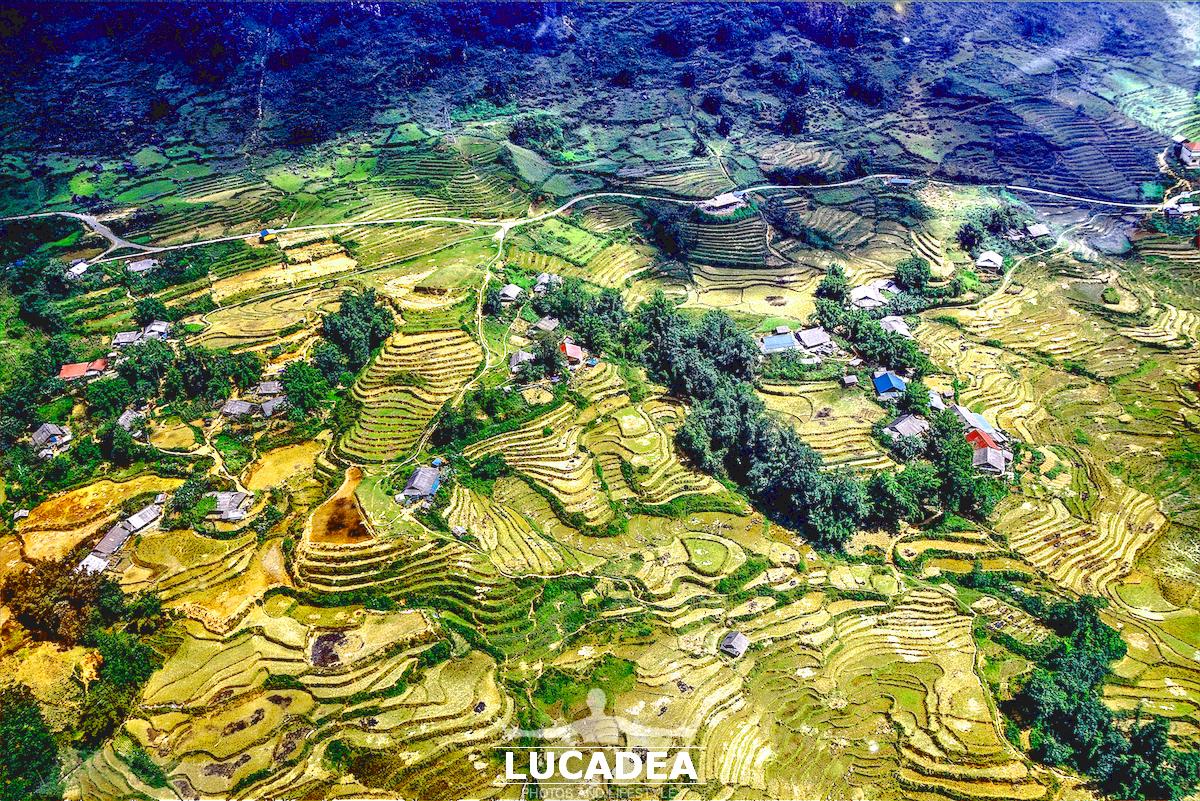 Le terrazze a Sa Pa in Vietnam
