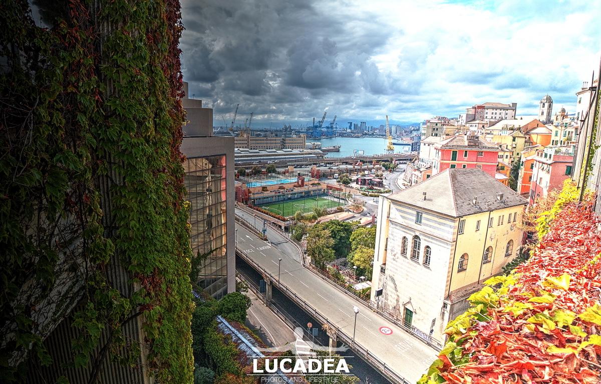Il quartiere di via Madre di Dio a Genova