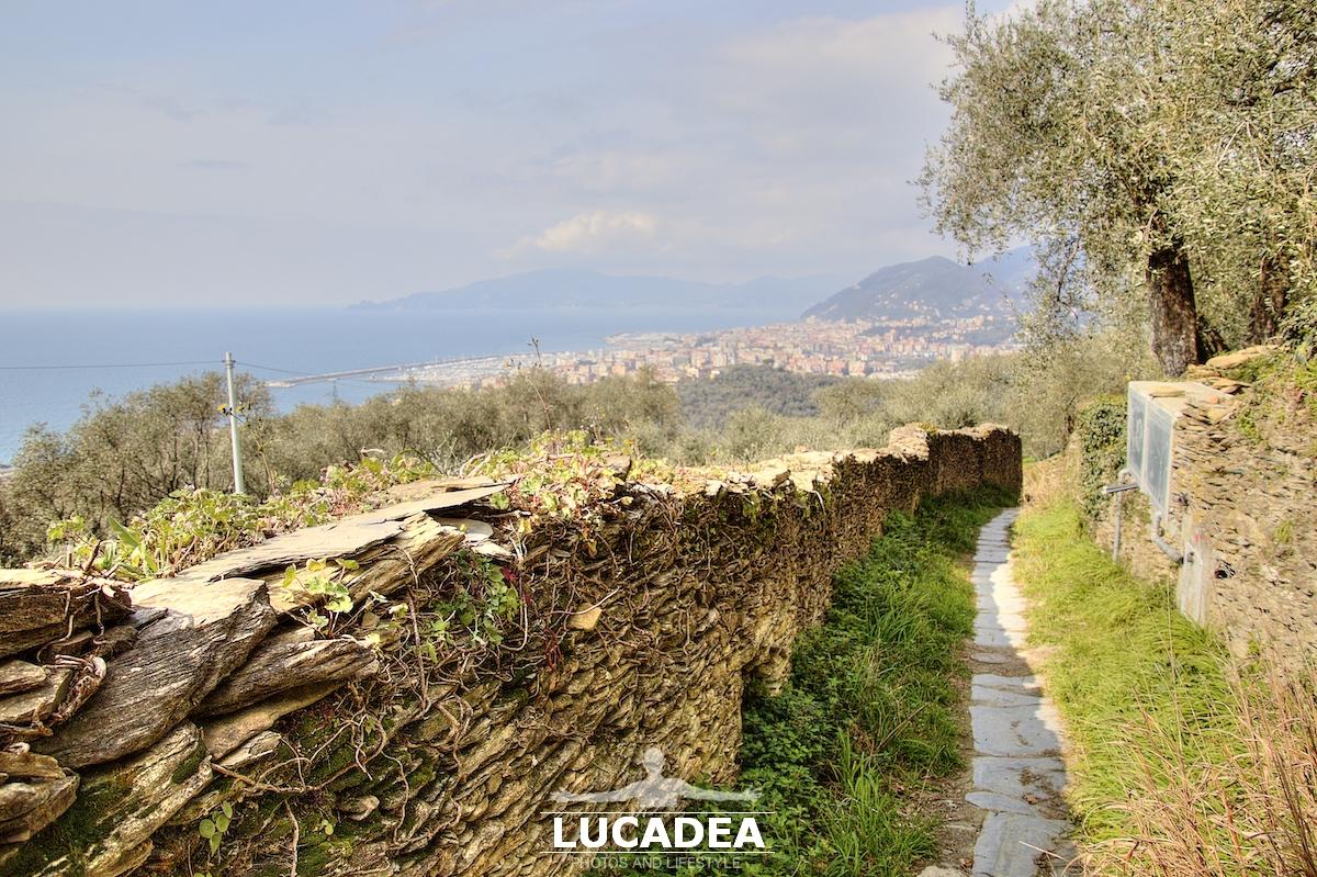 Il sentiero che da Santa Giulia va a Lavagna