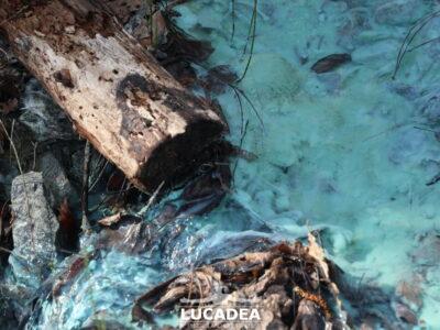 Le acque verderame delle miniere di Libiola