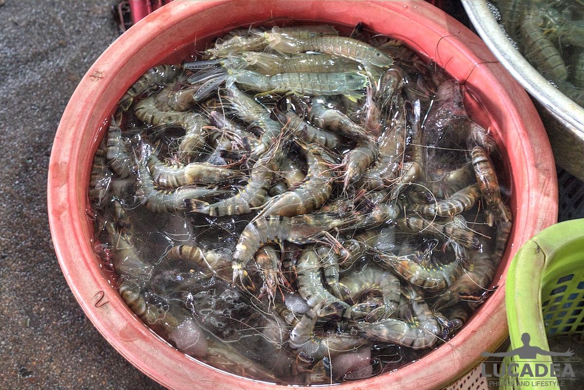 Cibo cambogiano 20