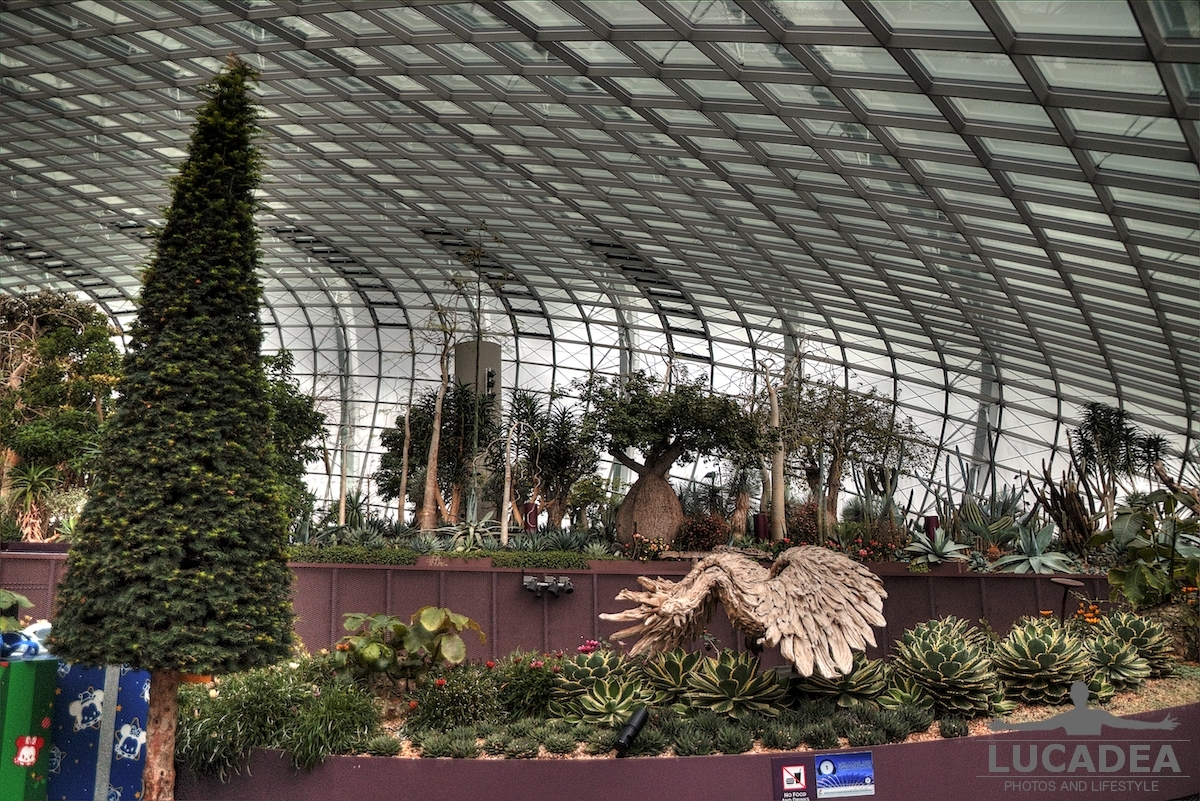 Flower Dome 01