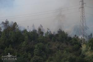 Incendio_a_Sestri_Levante_04