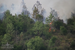 Incendio_a_Sestri_Levante_06
