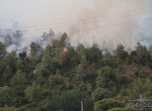 Incendio_a_Sestri_Levante_11