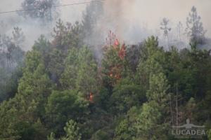 Incendio_a_Sestri_Levante_14